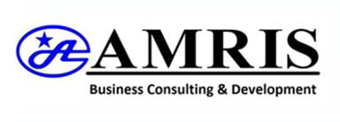 Amris Consulting Services